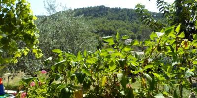 camping à vendre en Provence avec très bele vue