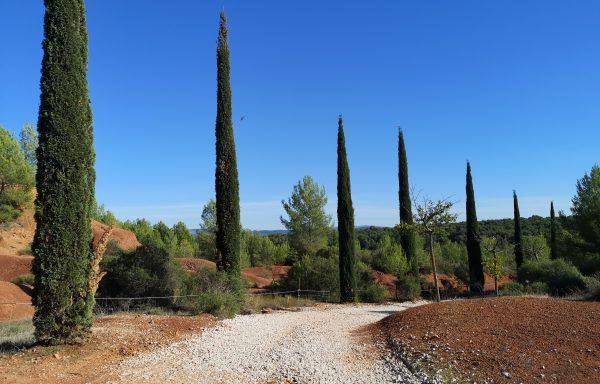Chambre d'hôtes à vendre région Aix-en-Provence