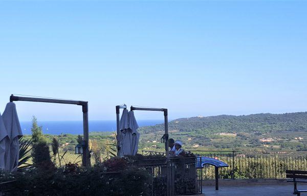 Côte d'Azur, restaurant avec vue mer Panoramique REF RS-769